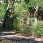 Fairweather Trail before Jan 2009